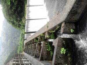 ダムの遡上水路