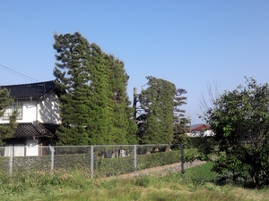 簸川平野の民家