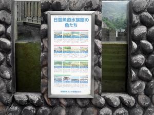 日登ダムの驚き。
