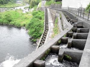 ダムから水路